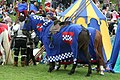 Blue team horse. - panoramio.jpg