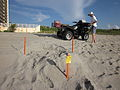 Boca Turtle Inspector nest vehicle.JPG