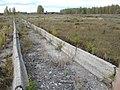 Bogdanovichskiy r-n, Sverdlovskaya oblast', Russia - panoramio (4).jpg
