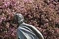 Botanic garden - Cluj-Napoca.jpg