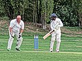 Botany Bay CC v Rosaneri CC at Botany Bay, Enfield, London 6.jpg