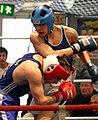 Boxing in Germany.jpg