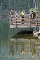 Boys fishing from deck at Clear Lake-Mt Hood (26406655266).jpg