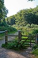 Bridleway CB17 leaves Lynch Lane - geograph.org.uk - 539911.jpg