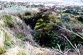 Brimpts Tin Mine Shaft Dartmoor - geograph.org.uk - 1066241.jpg