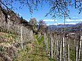 Brixen, Province of Bolzano - South Tyrol, Italy - panoramio (28).jpg