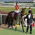 Buena-Vista-horse20100220.jpg