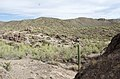Butcher Jones Trail to Pinter's Point Loop, Tonto National Park, Saguaro Lake, Ft. McDowell, AZ - panoramio (39).jpg