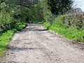 Byway to Faulkland Lane - geograph.org.uk - 1288548.jpg