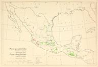 CL-52 Pinus pseudostrobus & Pinus gordoniana range map.png