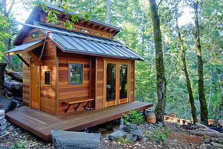 Cabin-inspired tiny home built in the woods