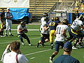 Cal football spring practice 2010-04-17 3.JPG