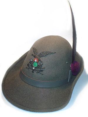 Alpini - A Cappello Alpino of a Combat Engineer of the Alpini Corps: with raven feather, amaranth Nappina, (tuft) and the coat of the 2° Engineer Regiment.