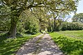Castle Farm Lane - geograph.org.uk - 1273342.jpg