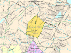 Census Bureau map of Morris Plains, New Jersey