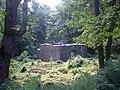 Chapel on Inchagoill, Lough Corrib - geograph.org.uk - 29848.jpg