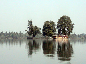 "Platanus orientalis - Famous Char Chinar (""four chinar trees"") island on Dal lake, Srinagar, Jammu and Kashmir, India."