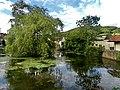 Cheddar - panoramio (2).jpg