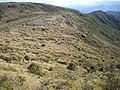Chegando no fim de Isabeloca^ - panoramio (2).jpg