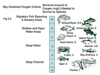 Oxygen saturation - Dissolved oxygen levels required by various species in the Chesapeake Bay (US)