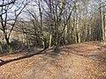 Chiltern Way and Ridgeway - geograph.org.uk - 1271063.jpg