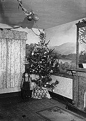 Christmas tree and little girl