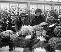 Chrysanthemum show, 1925 Nov 5. (5).jpg