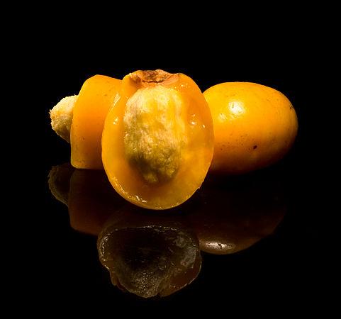 Ciriguela (Spondias purpurea) fruto cortado e inteiro.jpg
