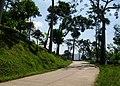 Citalem, Cipongkor, West Bandung Regency, West Java, Indonesia - panoramio (1).jpg