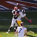 Cleveland Browns vs. Pittsburgh Steelers (15344913500).jpg