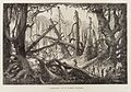 Climbing along a fallen tree in a dense forest of dead trees. Wellcome L0034828.jpg