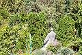 Cluj-Napoca Botanical Garden-9974.jpg