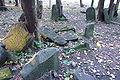 Cmentarz żydowski w Będzinie35.jpg