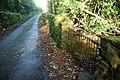 Coed Plas Boduan Woods - geograph.org.uk - 618338.jpg