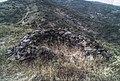 Coll de Banyuls 2013 07 17 06 M6.jpg