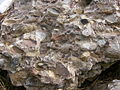 Conglomerate.2484.JPG