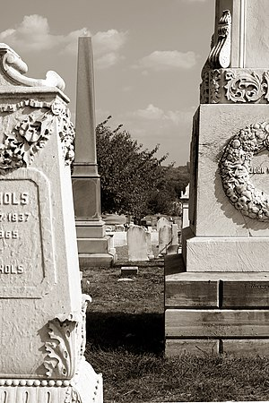 Congressional Cemetery, located in Southeast W...