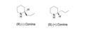 Coniine enantiomers.png