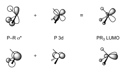 Molecular orbital scheme, illustrating the linear combination of P–R σ* and P 3d orbitals to form PR3 π-acceptor orbitals