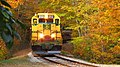 Conway Scenic Railway, Arethusa Falls Trail, Hart's Location (494278) (11924651153).jpg