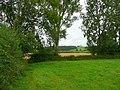 Corner of pasture - geograph.org.uk - 908670.jpg