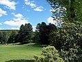 Coronation Park Trees, Oughtibridge - 2 - geograph.org.uk - 1114029.jpg