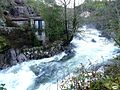 Cotobade-Río Almofrey-A tope01 (5378497111).jpg