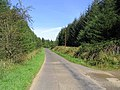 Country Road - geograph.org.uk - 533066.jpg