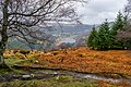 County Wicklow - Glendalough - 20190219021822.jpg