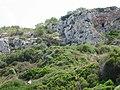 Coves de Son Bou 001 - panoramio.jpg