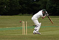 Cricketer bowled.jpg