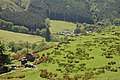 Cwm Farm from B4391 viewpoint - geograph.org.uk - 799815.jpg