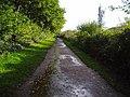 Cycleway - geograph.org.uk - 279641.jpg