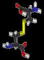 Cystine-3D-sticks.png